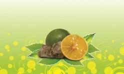 Lime & Sour Plum Juice